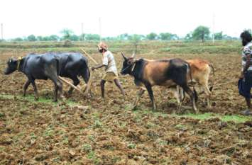 किसान समस्याओं से जकड़ा है, वह भाषण से नहीं सीखता, उसे खेती करके दिखाएं