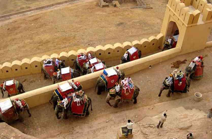 खुशखबरी : नाहरगढ में 3 जगह होगी हाथी सफारी, पर्यटक उठाएंगे लुत्फ