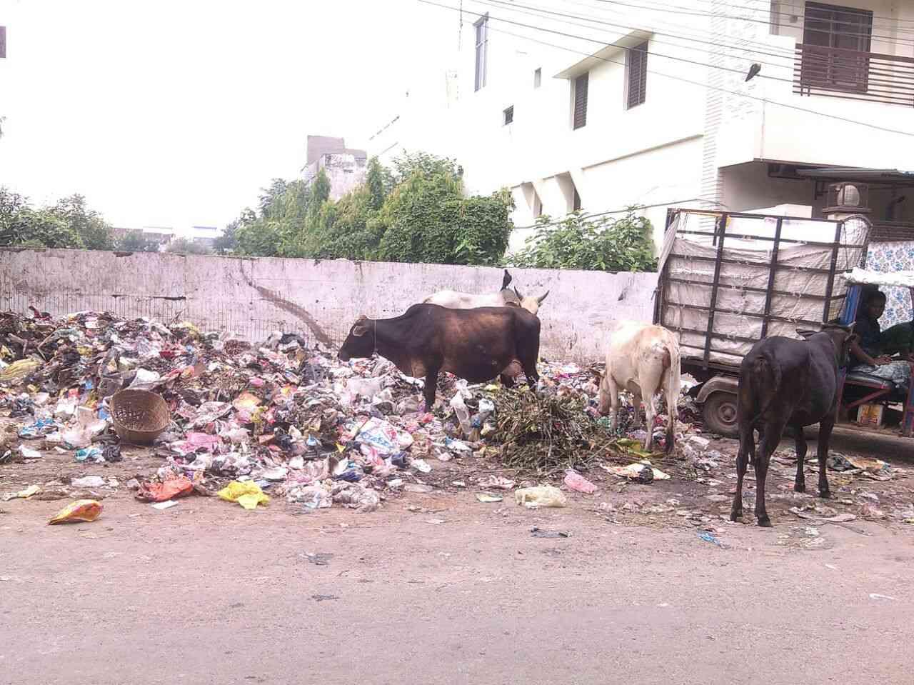 Swachata Abhiyan in Gorakhpur