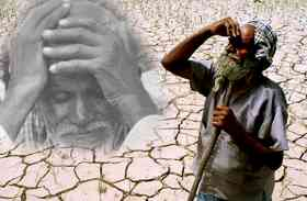 मानसून की बेरूखी से दो अरब की फसल तबाह, फसल को देख फुट-फुट कर रो पड़े किसान...