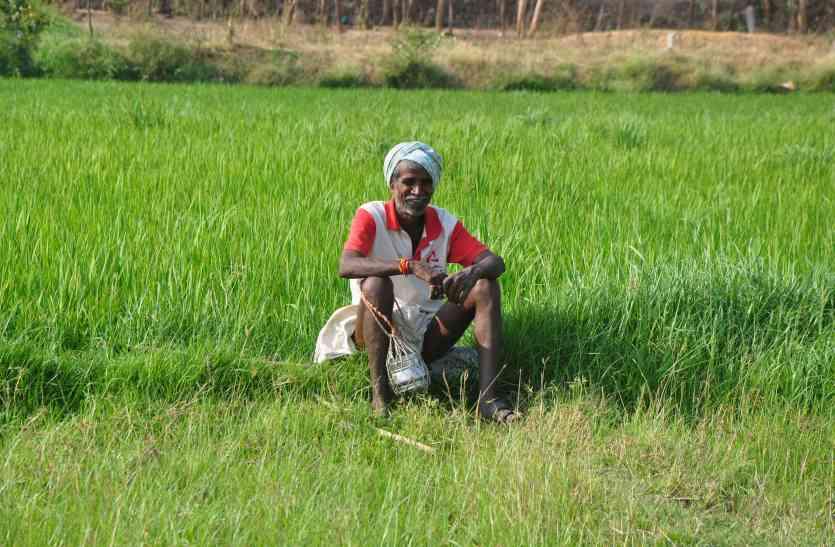पांच हजार किसानों को बटेगा फसल ऋण मोचन प्रमाण पत्र