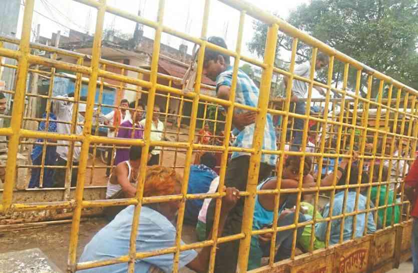 खुले में शौच करने पर मिली सजा, 28 लोगों पर जुर्माना, निगम ने काऊ कैचर में भरकर शहर से 9 किमी दूर ले जाकर छोड़ा