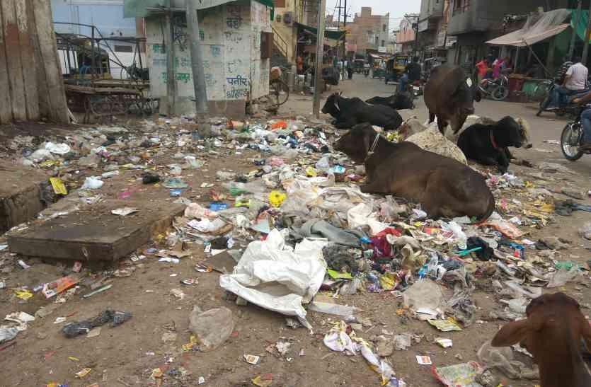 अभियान की पोल खोल रहा कचरा, हकीकत से दूर निगम की व्यवस्था