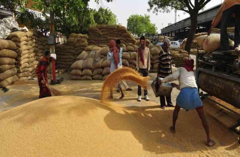 300 से अधिक अन्नदाताओं के साथ करोड़ों की धोखाधड़ी, किसान बोला- इस कांड में पुलिस भी है शामिल
