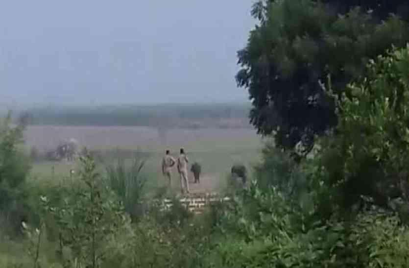 सिपाहियों ने खनन माफिया को खदेड़ा, भैंसा गाड़ी छोड़ खेत में छिपे