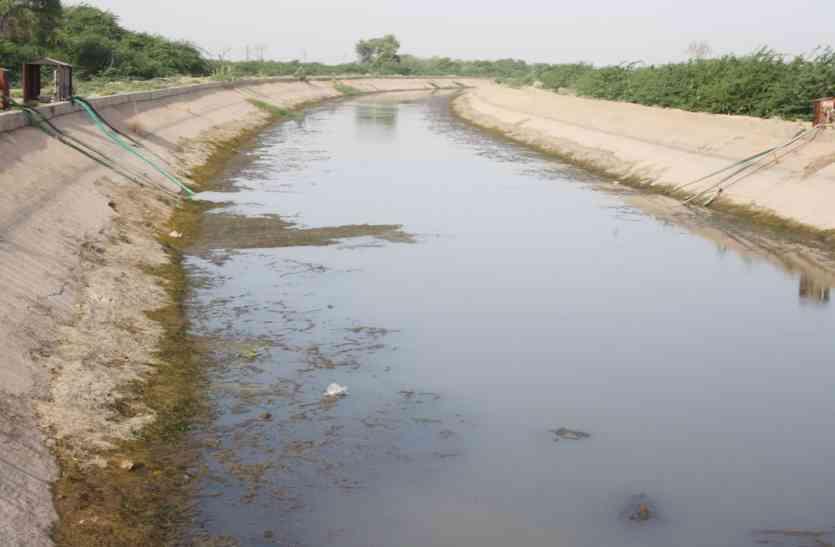 Jaisalmer- खरीफ की फसल जली, रबी के लिए भी नहीं मिल रहा बारीबन्दी का पानी!