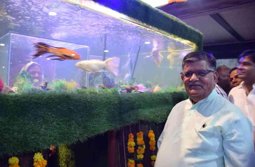 उदयपुर में देश का पहला वर्चुअल फिश एक्वेरियम शुरू, शहरवासी देख सकेंगे मछलियों का संसार