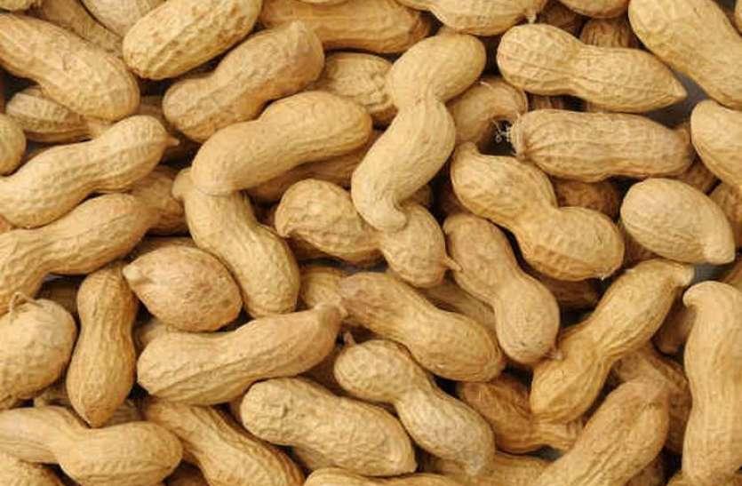 किसानों को खुश करने अब मूॅगफली खरीदेगी सरकार