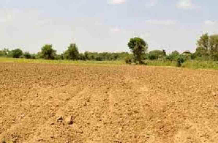 Jaisalmer- मौसम के कुंडली मारने से, फसलों के जीवन पर पड़ रहा यह दुष्प्रभाव