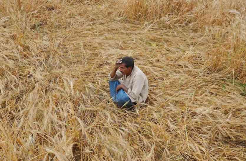 Jaislamer- 2 लाख किसानों को 1 साल से क्लेम का इंतजार!