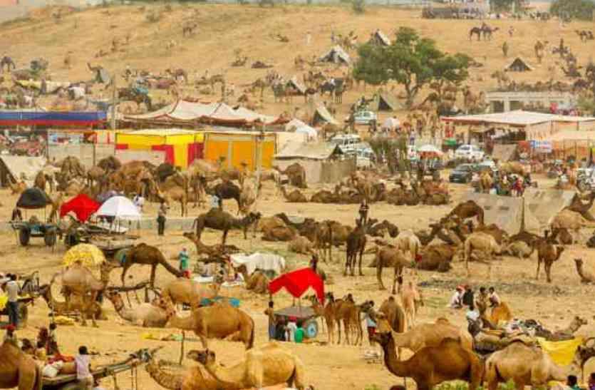 पुष्कर ही नहीं राजस्थान के ये मेले भी हैं वर्ल्ड फेमस, यहां दिखते हैं संस्कृति के कई रंग