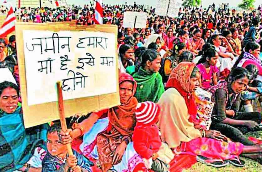 सामुदायिक वन अधिकार देने में एमपी-गुजरात से पीछे राजस्थान, सरकार के आंकड़ों में खुली पोल