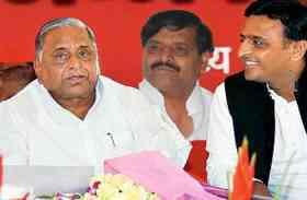 UP Nagar Nikay Chunav : शिवपाल यादव ने मतभेद भूल दिया बड़ा बयान, अखिलेश-मुलायम हुए खुश