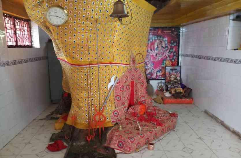 घोर कलियुग: चोरों ने देवी के मंदिर को भी नहीं छोड़ा, दानपेटी और जेवरात ले उड़े