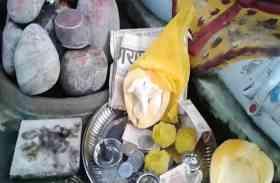 पपीता में निकले गणेश भगवान, लोग अवतार मान कर रहे पूजा, देखें VIDEO