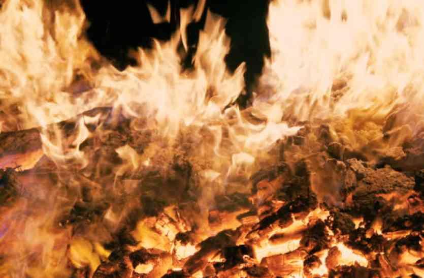 अब पड़ेगी प्रदूषण की असली मार,  पराली के बाद जलने वाली है एक साथ इतने क्विंटल लकड़ी