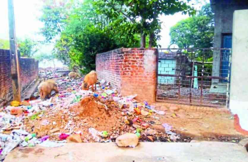 नगर पालिका अध्यक्ष के वार्ड में स्वच्छता की निकली हवा, ODF का दावा फुस्स