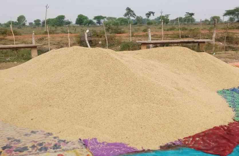 सूखे की मार झेल, मेहनत की उपज लेकर मंडी पहुंचे किसान, शुरू हुई आज से समर्थन मूल्य में धान खरीदी