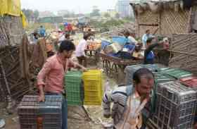 लालकोठी सब्जीमंडी में अफरा-तफरी, सामान उठाकर भागे लोग, देखें तस्वीरें
