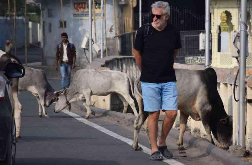 केवल जयपुर ही नहीं टूरिस्ट सिटी उदयपुर के भी हैं कुछ ऐसे हाल, नहीं चेता नगरनिगम