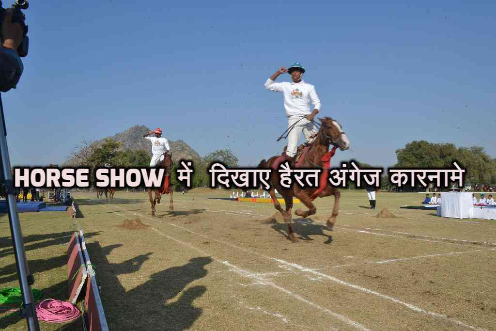 beautiful pics of horse show in mayo college ajmer
