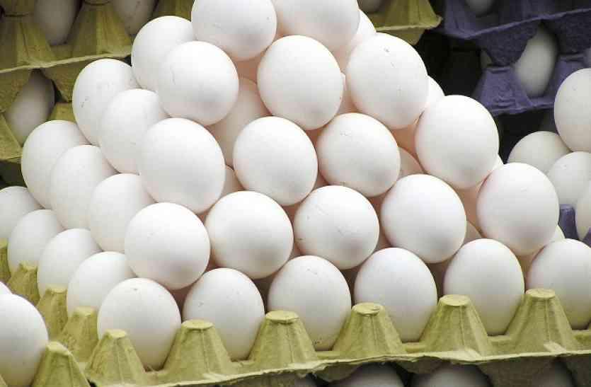 क्या आप भी हैं अंडे खाने के शौकीन, इस खबर को पढ़ने के बाद खाना तो दूर हाथ भी नहीं लगाएंगे