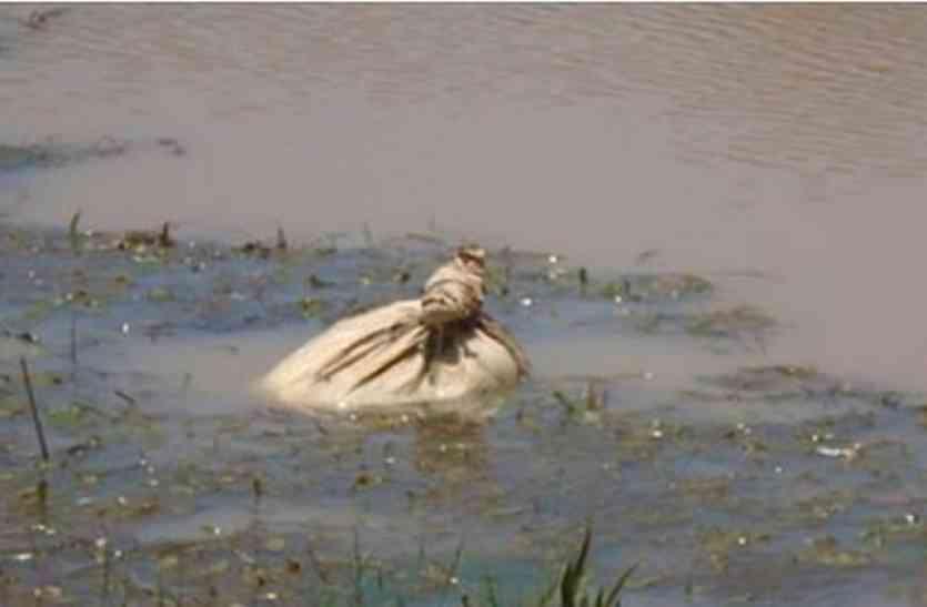 नदी में तैर रहे थैले को देख थम गयीं लोगों की सांसें, अंदर से निकला कुछ ऐसा जिसपर नहीं हुआ यकीन