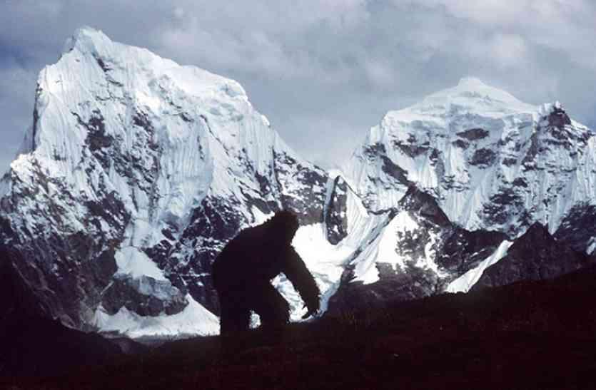 हिममानव के रहस्य पर सबसे बड़ा खुलासा, वैज्ञानिकों ने बताई दुनिया को हैरान करने वाली सच्चाई