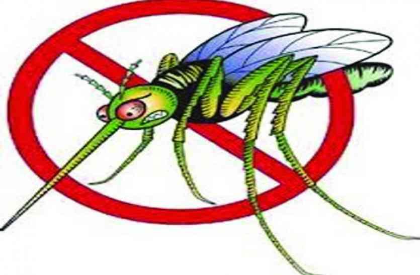 लोकार्पण के इंतजार में पड़ी मच्छरदानी, मरवाही-पेंड्रा व गौरेला में मलेरिया का कहर
