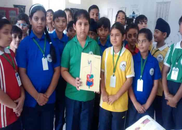 mount litera zee school, mount litera zee school agra, evs activity, kids, mount litera zee school kids school