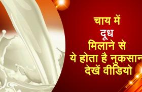 चाय में दूध मिलाने से ये होता है नुकसान, देखें वीडियो