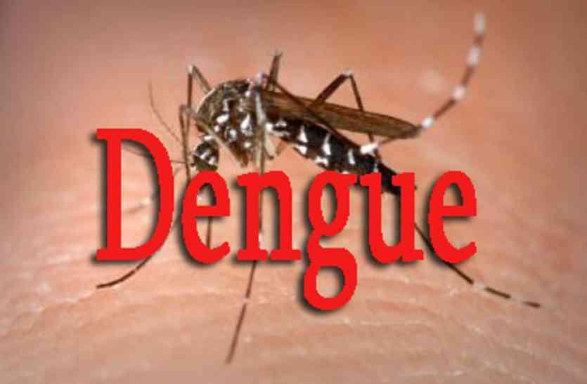 क्या आप जानतें हैं इन कारणों से होता है डेंगू
