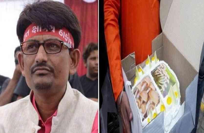 मशरुम के राजनीतिक फायदे, बीजेपी कार्यकर्ता क्यों बांट रहे हैं मशरुम केक