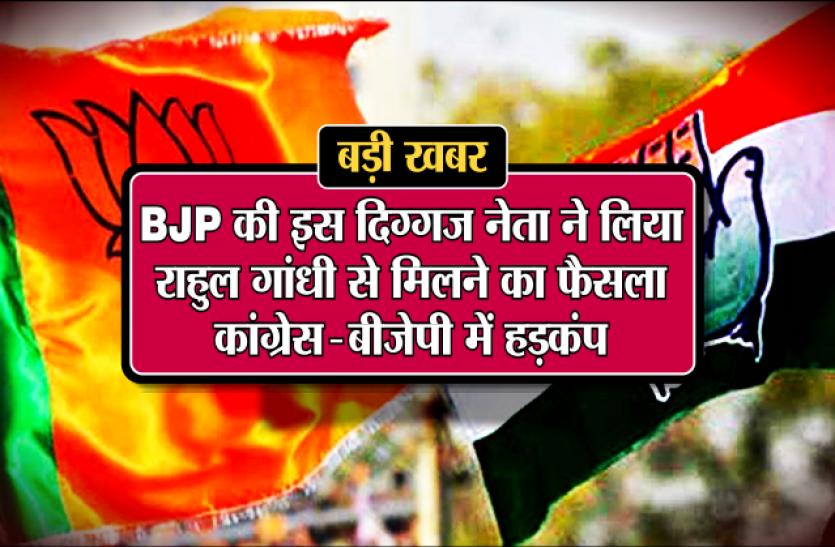 बीजेपी की इस दिग्गज नेता ने लिया राहुल गांधी से मिलने का फैसला, कांग्रेस-भाजपा में हड़कंप