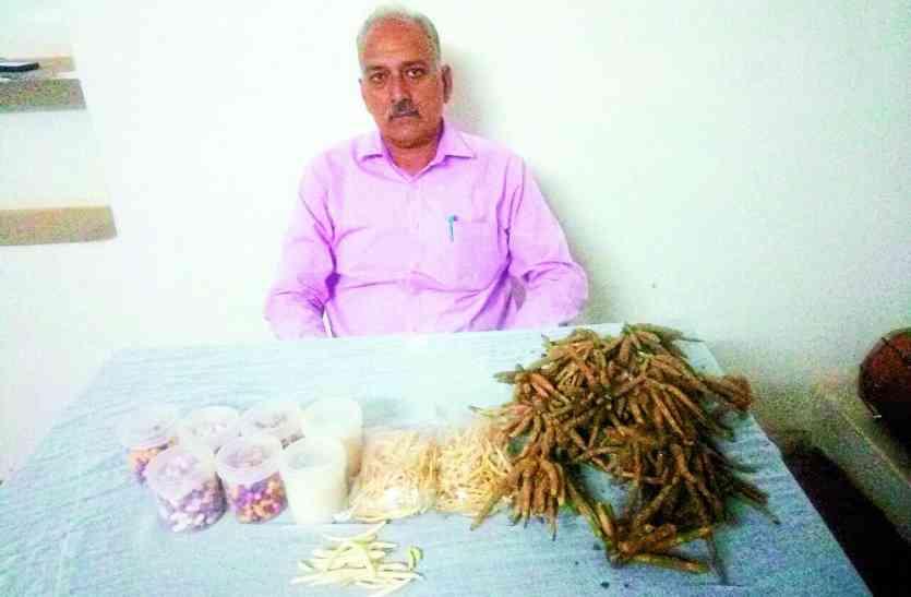 National Farmers Day: उदयपुर के इस किसान ने किए खेती में ऐसे प्रयोग कि बन गए दूसरों के लिए आदर्श, आज कमा रहे लाखों में