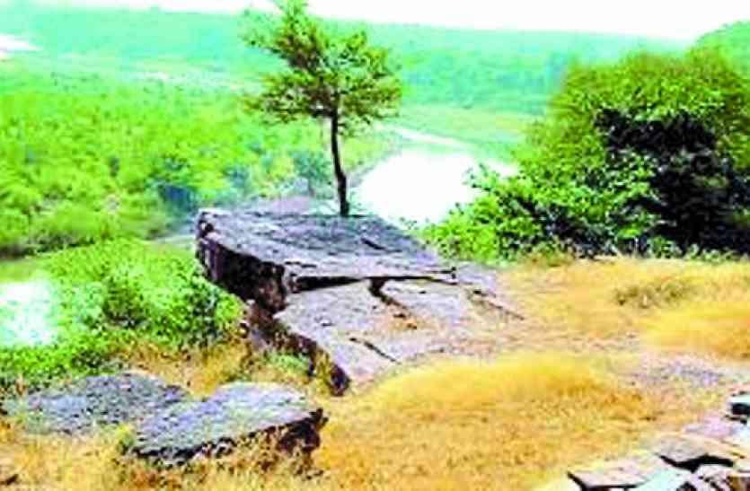 मध्यप्रदेश की इस नदी में मिली 33 ऐसी प्रजातियां जिन्हे देखकर एक्सपर्ट भी रह गए दंग, कुछ ऐसे हैं वो जीव