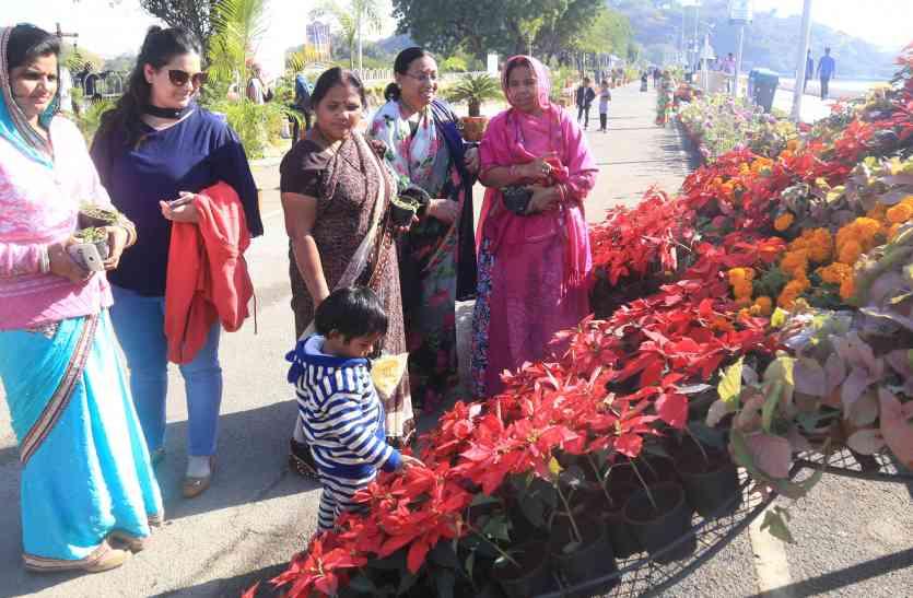 FLOWER SHOW UDAIPUR 2017: देशी-विदेशी फूलों से महक रही पाल, पर्यटकों को रास आ रही फूलों की खूबसूरती