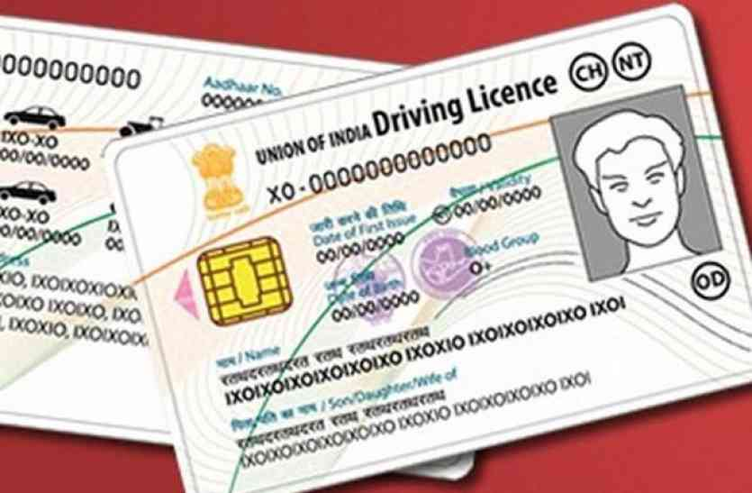 Image result for driving licence demo