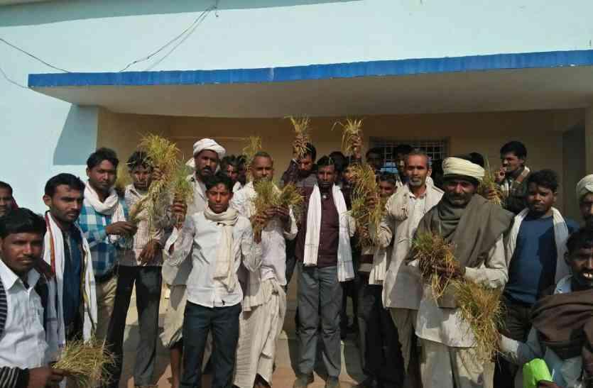गांव में बिजली न आने पर किसानों ने किया देखकर अधिकारी भी रह गए दंग