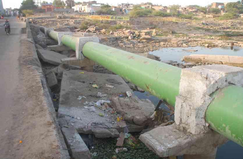 77 करोड़ खर्च फिर भी चंबल का पानी जहरीला, मगरमच्छ तोड़ रहे दम, मछलियां कर रही मौत से संघर्ष