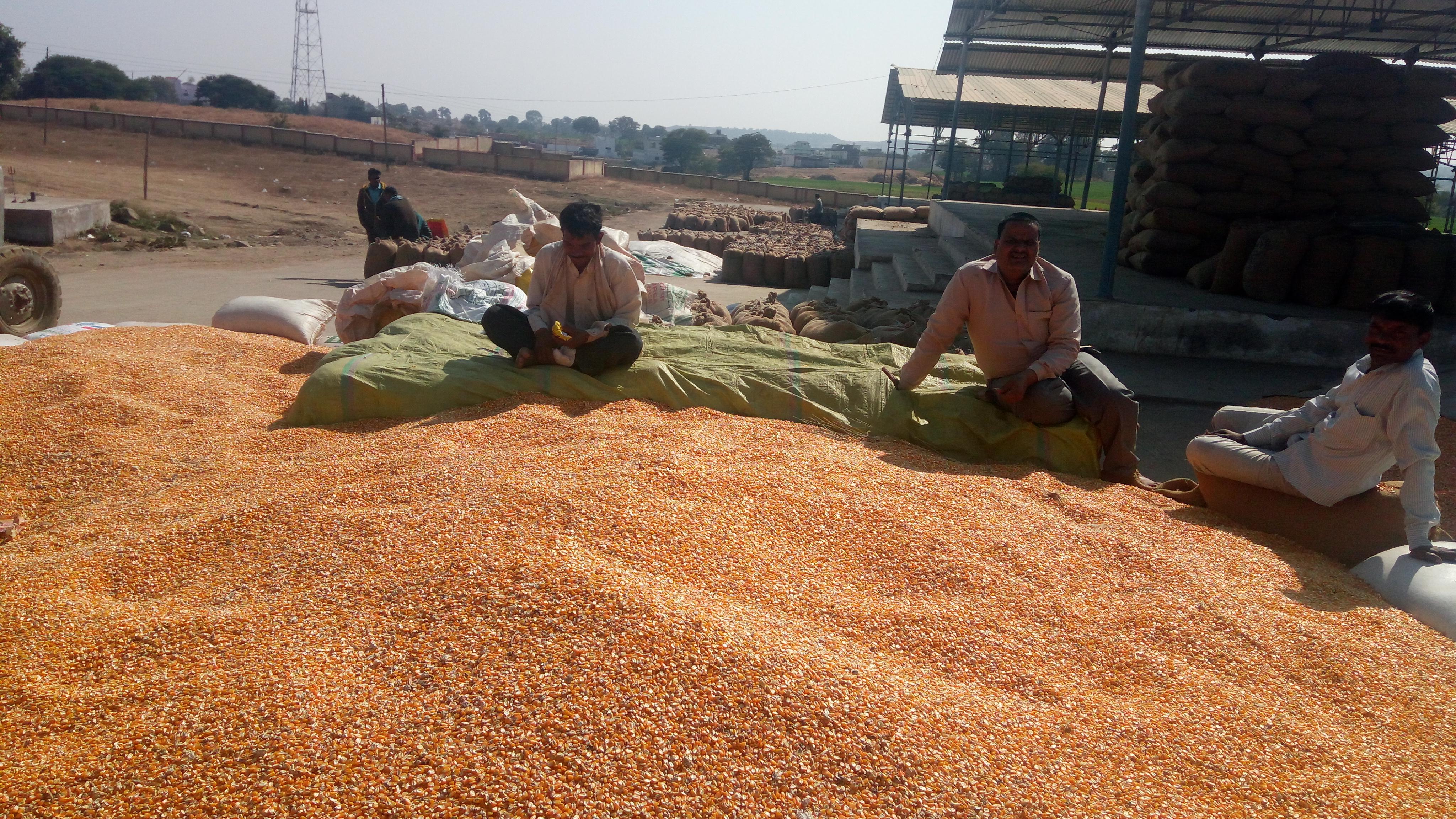 किसानों ने ठिठुरन में गुजारी रात