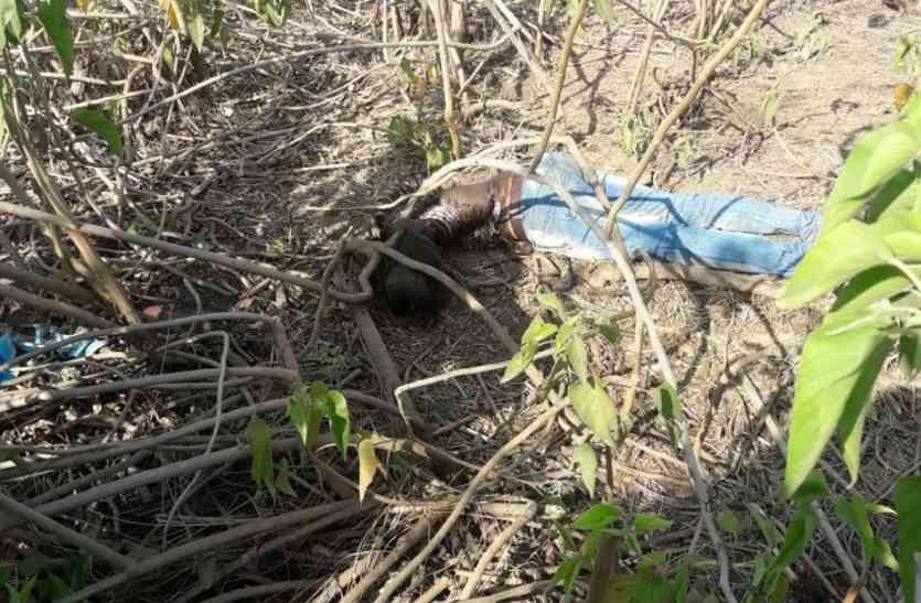 लापता 12वीं के छात्र की लाश जंगल में मिली