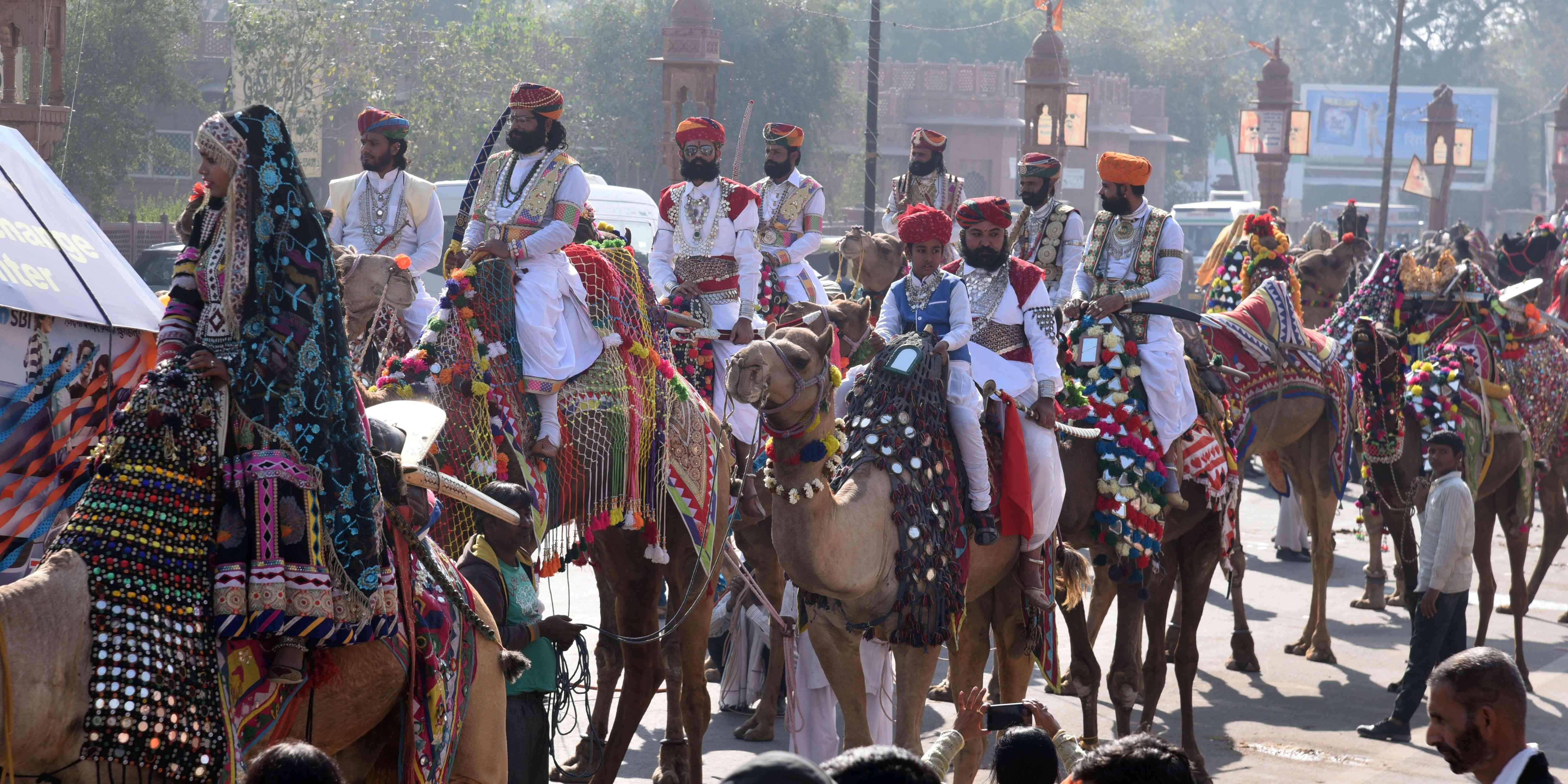 international camel festival 2018