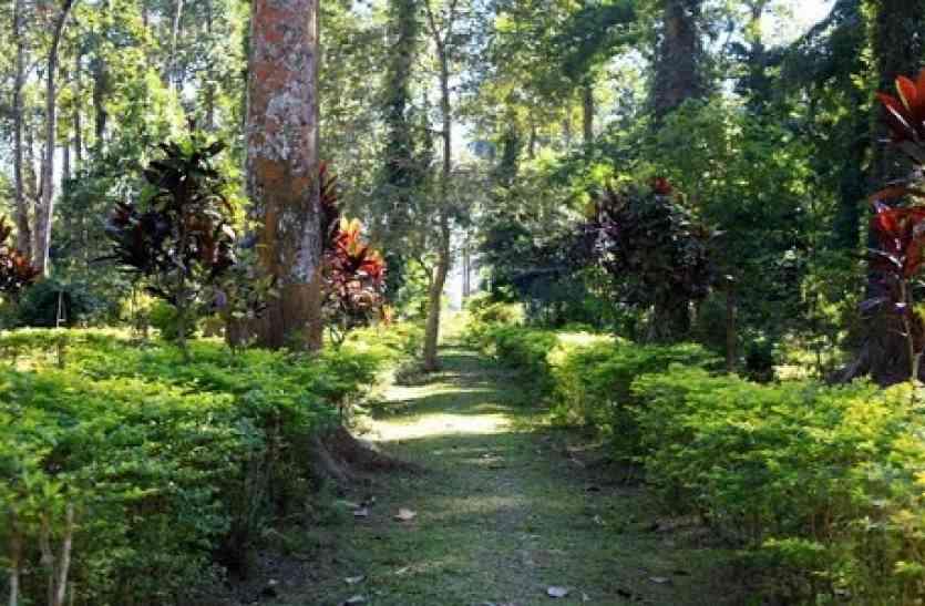 अजब-गजब: उत्तर प्रदेश के इस गार्डन में मौजूद है समुद्र मंथन में निकला कल्पवृक्ष