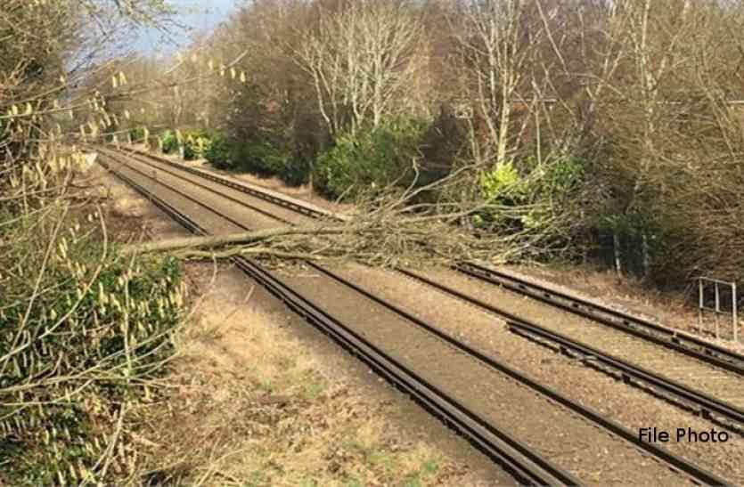 ब्रेकिंग : नक्सलियों ने पेड़ काटकर केके रेल लाइन किया बाधित, वॉकी-टॉकी सहित कई सामान भी लूटा