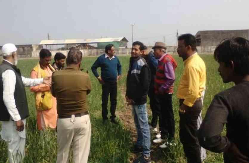 गेहूं के खेत में चलाई जेसीबी...मंडी का जमीन पर कब्जा