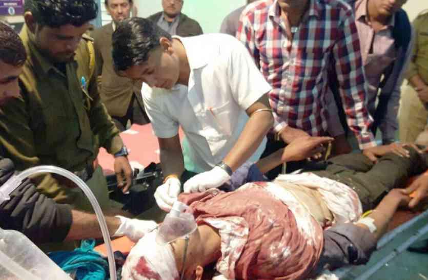 बाघ के हमले में युवक घायल, खेत में फसलों में पानी दे रहा था युवक