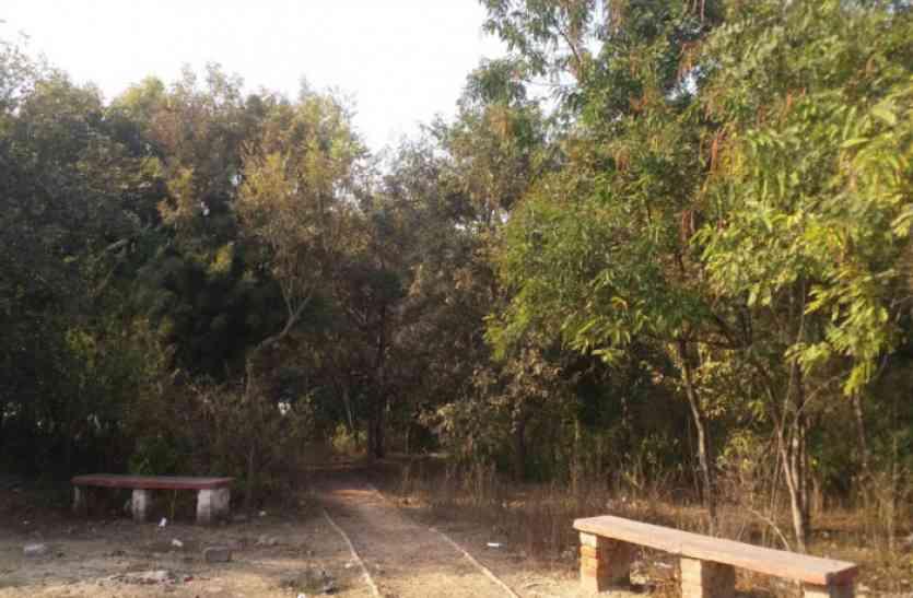 जंगल है या खेल मैदान, आश्चर्य में खिलाड़ी व ग्रामीण