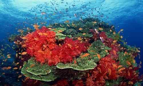 Bay of Bengal,deep depression bay of bengal,Port Blair,Andaman and Nicobar islands,Intresting News,