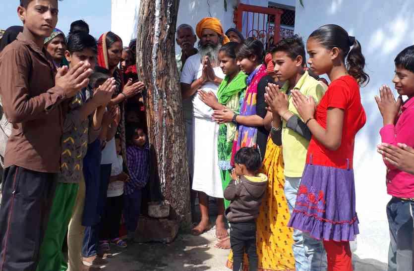 नीम के पेड़ में निकल रहा दूध, मंदिर में लगे पेड़ की कर रहे पूजा